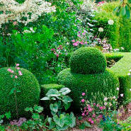 Mon jardin continental