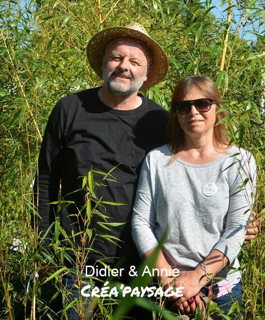 Pépinière Créa'Paysage, Bambous et graminées